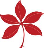 BuckeyeLeaf-Veins-Scarlet-RGBHEX