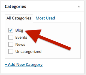 Categories edit area with the Blog category selected